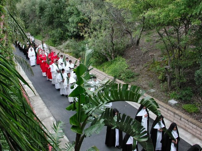 Palm Procession