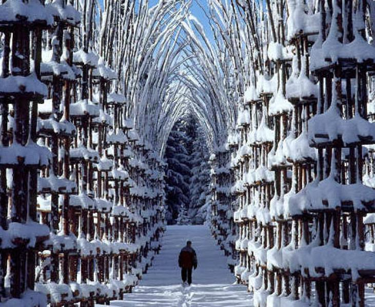 For joy in God's creation: Snow Cathedral, Norway.