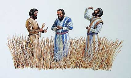 Jesus and his disciples eat grain on the Sabbath. (davidgospeldaily blog)