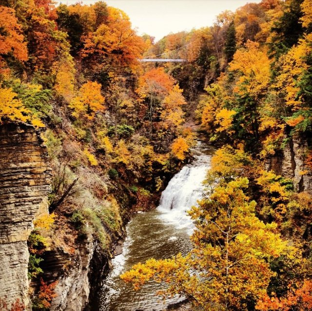 For joy in God's creation: Ithaca Gorge and Waterfall, Ithaca, New York. (anonymous)