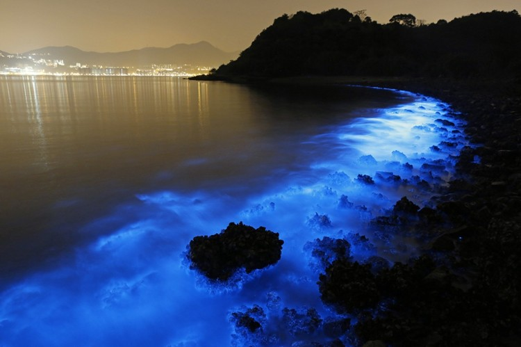 This may look pretty, but it's not; it's a toxic algae bloom in Hong Kong. (Kin Cheung/Associated Press)