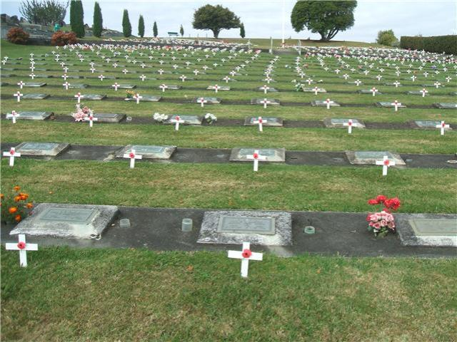 Te Awamatu Cemetery, New Zealand, with graves decorated with poppies. (Wikipedia)