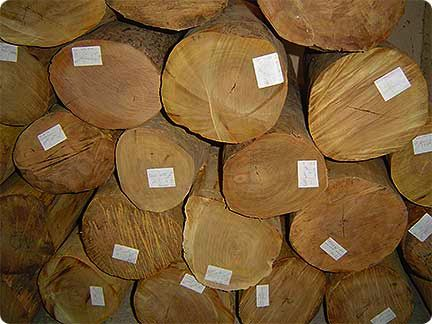 We can't be sure what almug wood was, but some believe it was white or red sandalwood as above, a fragant wood often used in incense mixtures. (hermitageoils.com)