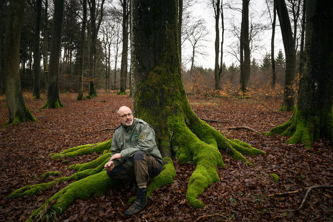 "Peter Wohlleben, a forester in Germany, is the author of the bestselling ""Hidden Life of Trees,"" which puts in understandable antropomorphic terms what scientists have known for some time: that trees are social creatures. They communicate with each other, nurture and help each other; they can count, learn and remember, warn each other of predators and care for the dying. A few people even believe they have a spiritual consciousness, but so far there are few such discoveries. (Gordon Welters/The New York Times)"