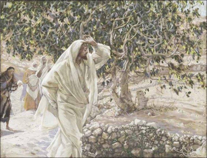 James J. Tissot: Accursed Fig Tree