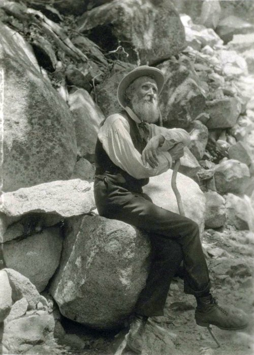 John Muir was born in Scotland, emigrated to Wisconsin, studied botany, moved to California and hiked through the Sierra Mountains, which so enchanted him that he founded the Sierra Club, one of the leading U.S. environmental advocacy groups, and convinced President Theodore Roosevelt to create a system of national parks and forests as spiritual temples of God's creation. (Francis M. Fritz)