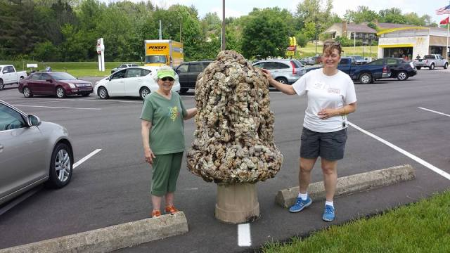 Marylin Day and Sandy Ridenour with a display of morel mushrooms two weeks ago at the Howard Hughes Memorial Mushroom Sale charity event, representing the farmers' market at St. David's, Bean Blossom, Indiana. (diocesan Facebook page)