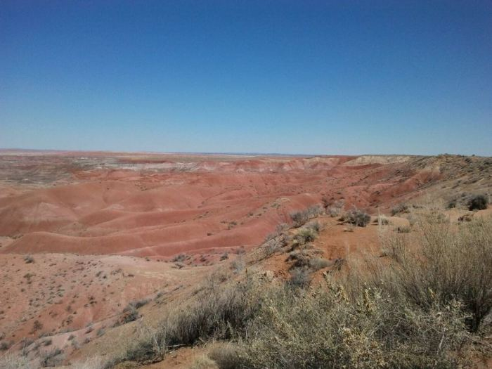 For the beauty of the Earth: Painted Desert, Arizona (Maria L. Evans)