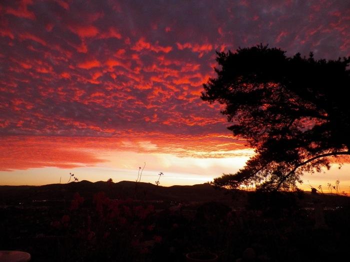Sunrise in Orange County, California. (Katrina Soto)