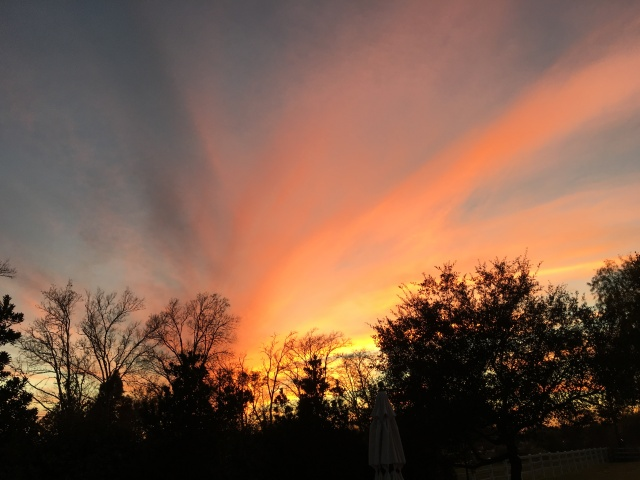 Sunset over Pearland, Texas, a suburb of Houston. (Clint Gilliland)