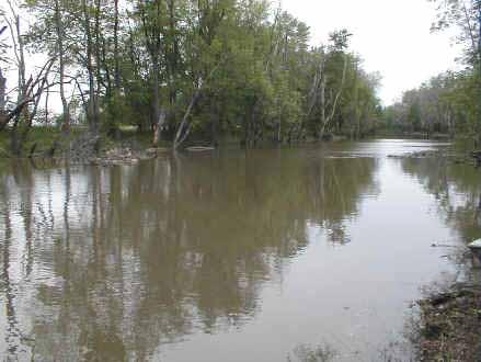 Iroquois River at Kentland, Indiana (U.S. Geological Survey)