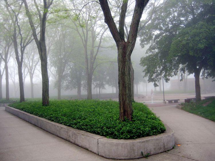 Morning fog over the Goshen College Quad, Indiana. (college photo)