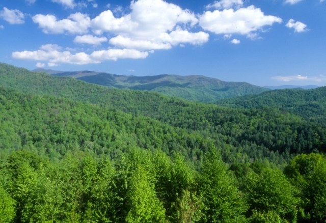 For the beauty of the Earth: Nantahala National Forest, North Carolina. (U.S. Forest Service)