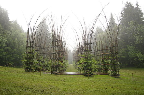 Tree Cathedral by the architect Giuliano Mauri near Trento, Italy.