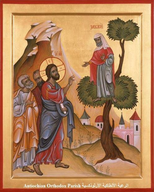 Zaccheus in the Tree; Antiochian Fathers.