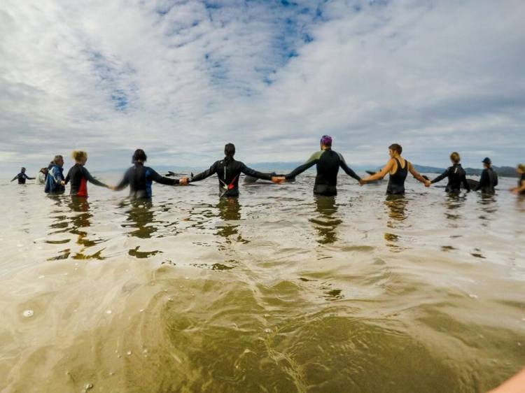 Several dozen pilot whales did make it back to safety with human help, then had to be discouraged from returning to the beach to be with the rest of their community. So the humans formed a chain of their own bodies to keep them out, and this time at least, it worked. (Project JonahNZ)